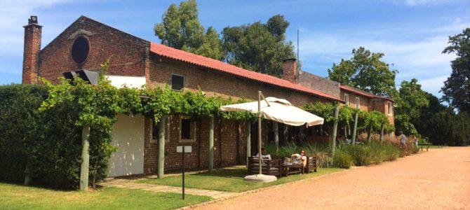Duas vinícolas no Uruguai: Juanicó + Bouza