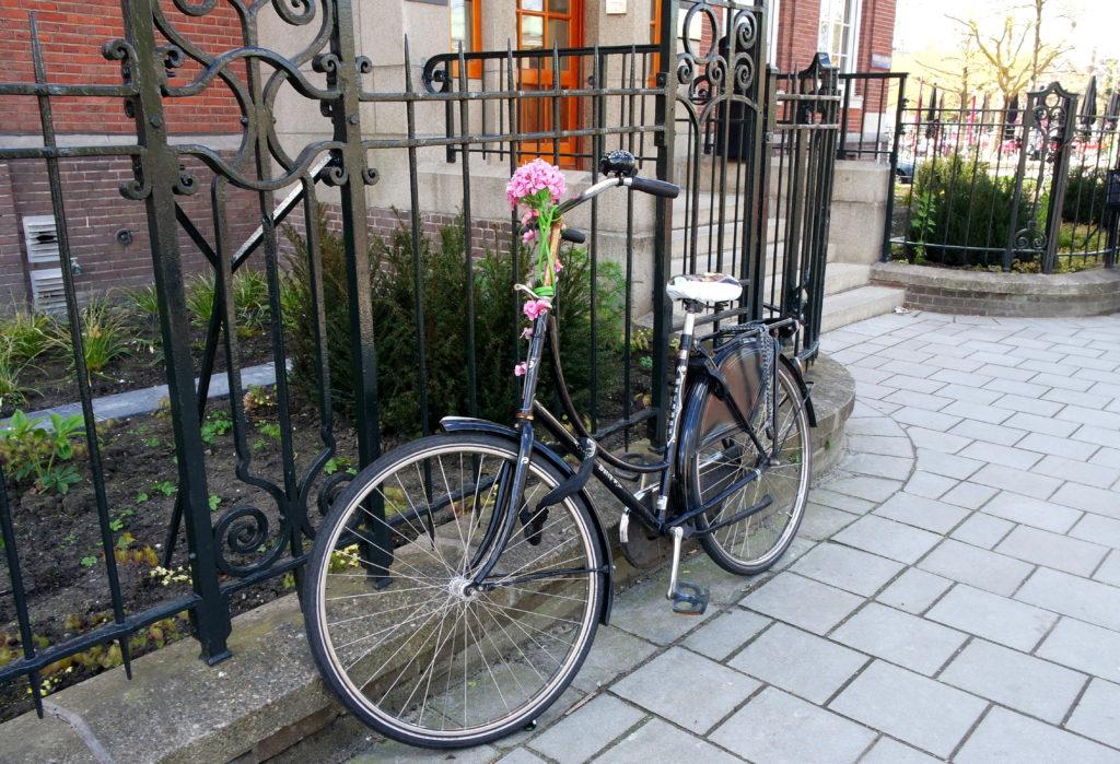 Bicicleta enfeitada por uma flor em Amsterdam