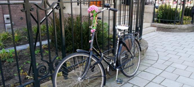 De Amsterdã e de Como Aprendi a Andar de Bicicleta