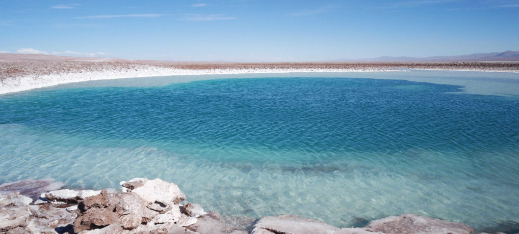 Lagunas Escondidas Baltinache + Vale del Bus – Deserto do Atacama