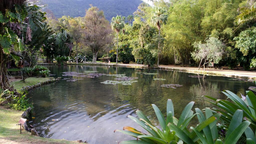 Um lago bucólico em meio ao jardim