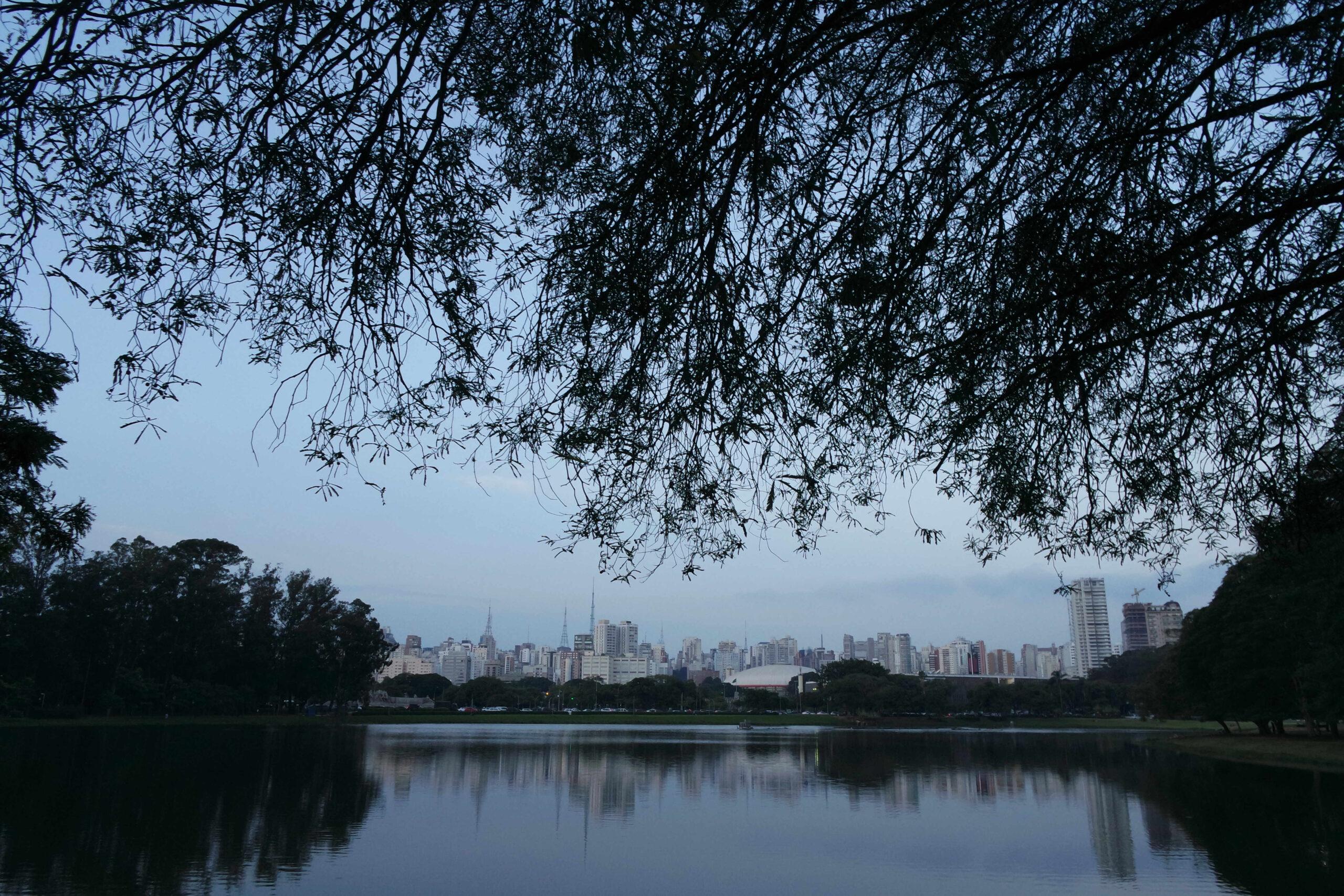 Parques São Paulo: Ibirapuera